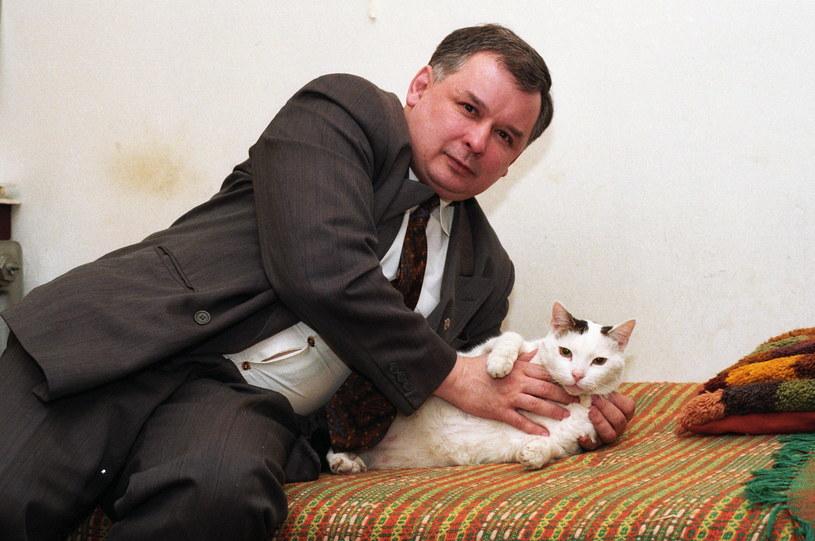 Jarosław Kaczyński z kotem /Wiernicki /Agencja FORUM