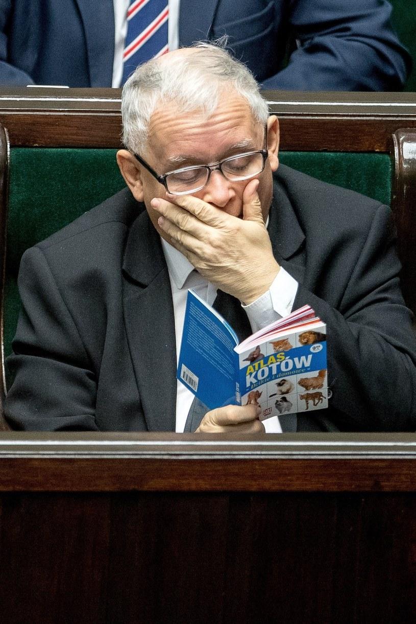 Jarosław Kaczyński /Iwańczuk /Reporter