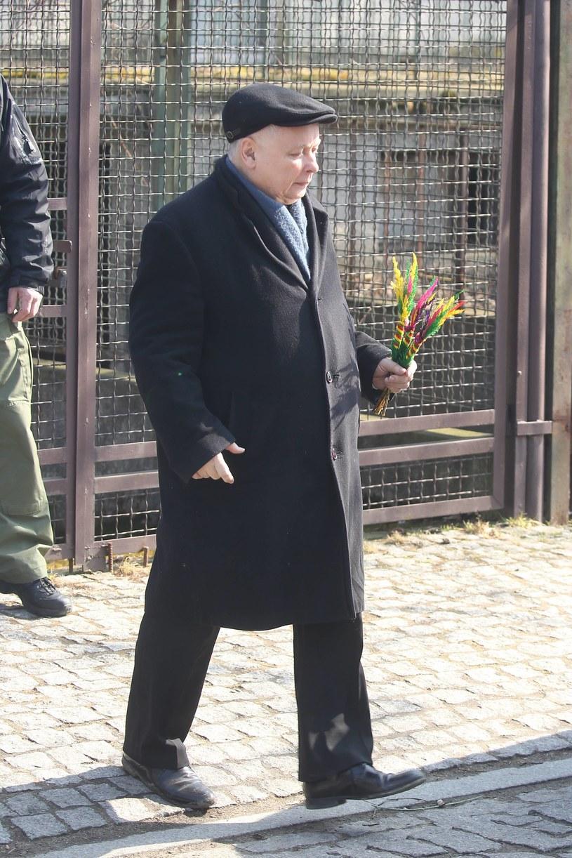 Jarosław Kaczyński /Newspix