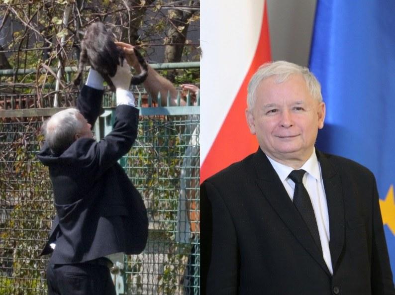 Jarosław z kotem /- /East News