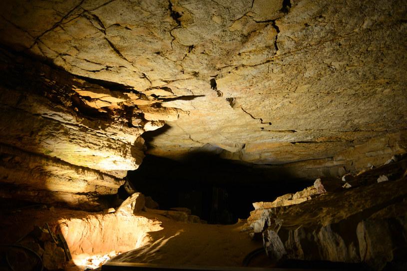 Jaskinia Mamucia jest popularnym miejscem wśród turystów /Picsel /123RF/PICSEL