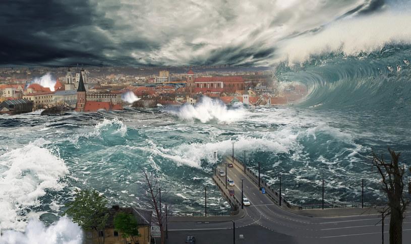 Jasnowidz Filipek przewidział powódź w 1997 roku. Mówi się także, że przewidział pandemię koronawirusa /123RF/PICSEL