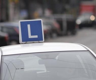Jazda bez prawa jazdy. Znamy szczegóły