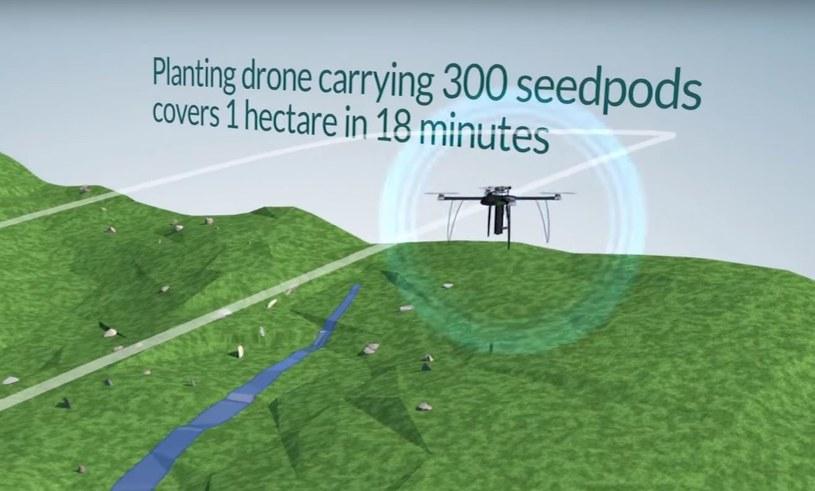 Jeden dron będzie mógł udźwignąć 300 sadzonek /YouTube
