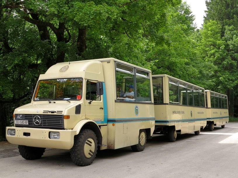 """Jeden z """"autobusów"""" przewożących turystów /123RF/PICSEL"""