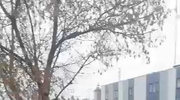 Jeden z koktajli Mołotowa trafił w elewację budynku