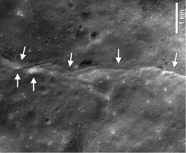Jeden z około 3500 uskoków tektonicznych na Księżycu, zobrazowanych przez sondę LRO /materiały prasowe