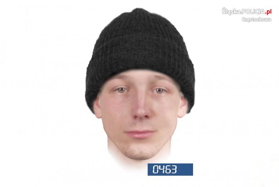 Jeden z portretów pamięciowych poszukiwanego napastnika /Śląska policja /