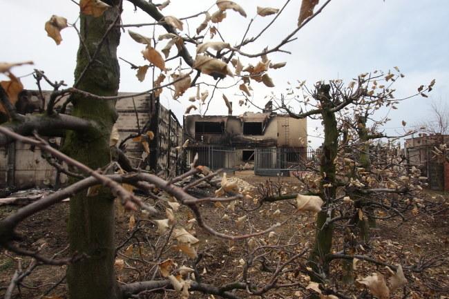 Jeden ze zniszczonych domów w Jankowie Przygodzkim /Tomasz Wojtasik /PAP