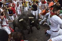 Jedna osoba wzięta na rogi przez byki w Pampelunie
