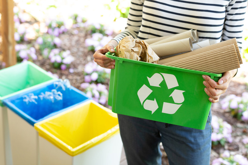 Jedna tona makulatury przeznaczona do recyklingu dostarcza tyle papieru, ile 16 drzew /123RF/PICSEL