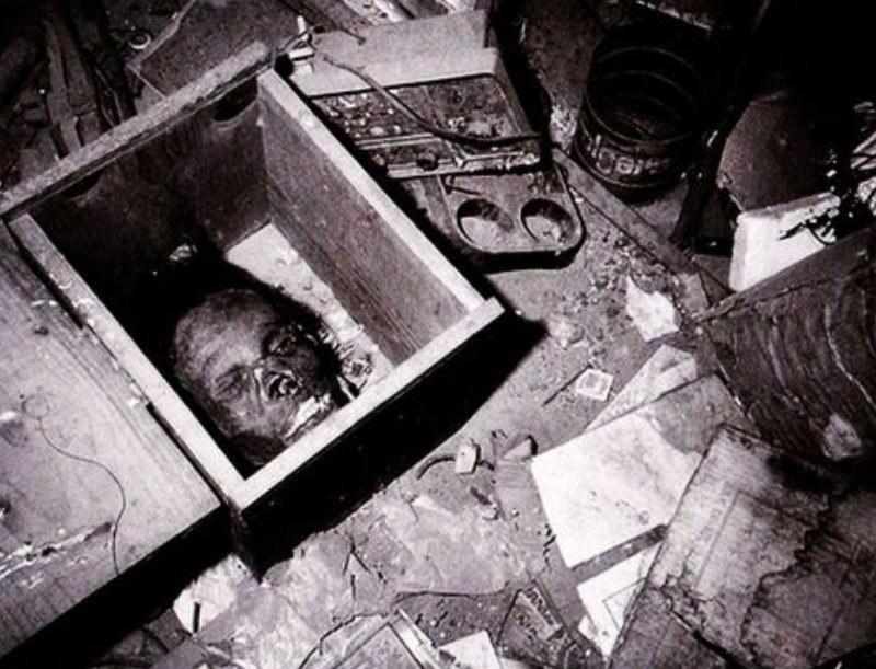 Jedna z głów znaleziona w domu Eda Geina /Getty Images/Flash Press Media