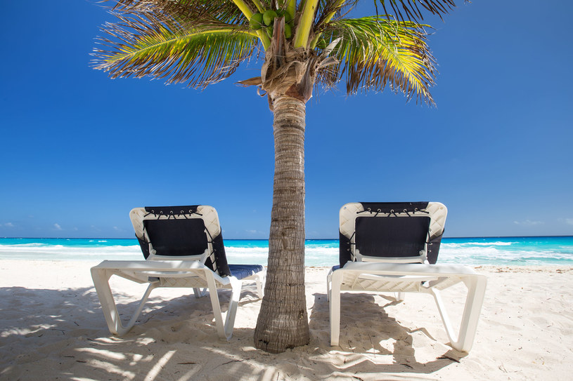 Jedna z karaibskich plaż /123RF/PICSEL