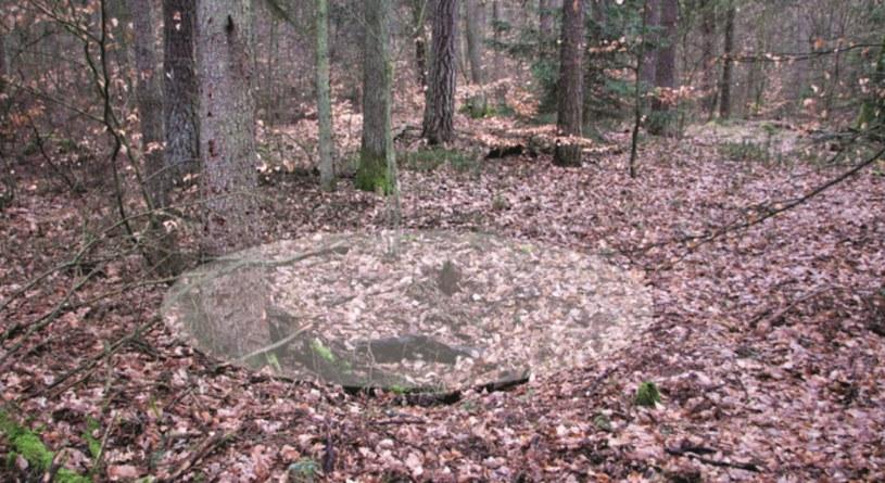 """Jedna z wielu ledwo widocznych w terenie jam, jakie można znaleźć w pobliżu """"kromlechu"""" /Odkrywca"""