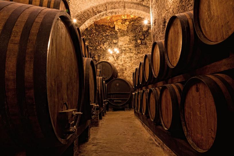 Jedna z winnic w miasteczku Vila Nova de Gaia /123RF/PICSEL