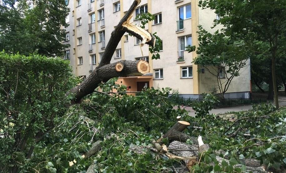 Jedno z warszawskich osiedli po nawałnicy /Michał Dukaczewski /RMF FM