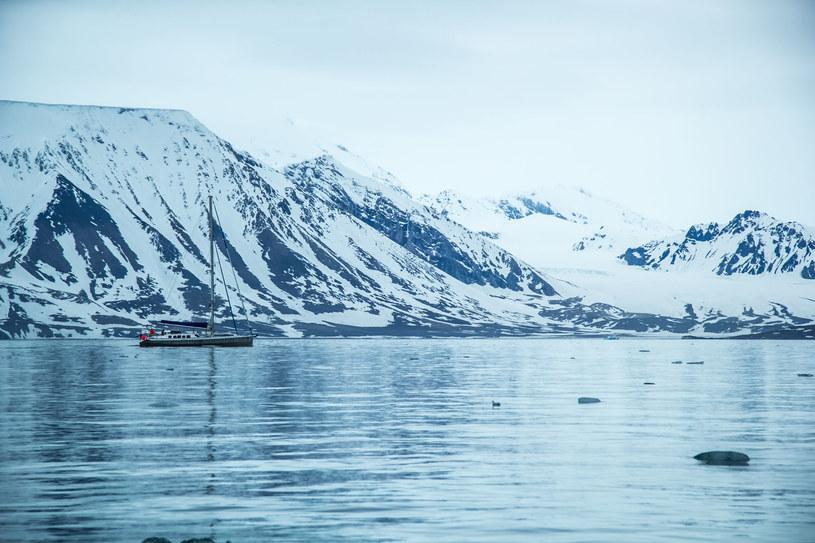 Jednym z frontów, na których toczy swoją walkę jest Arktyka... /123RF/PICSEL