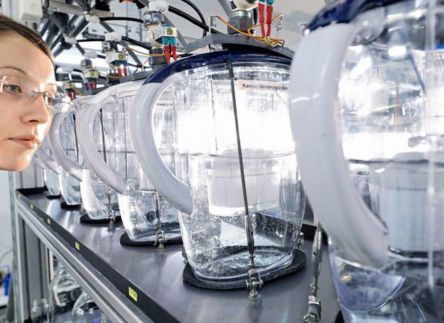 Jednym ze światowych liderów w zakresie filtracji wody jest niemiecka marka BRITA /materiały prasowe