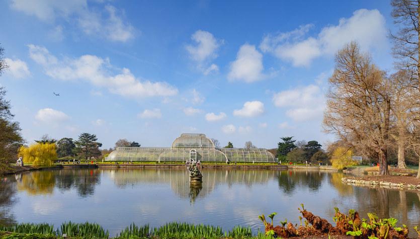 Jedyna taka współpraca Kew Gardens
