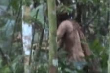 Jedyny ocalały z wymordowanego plemienia. Od ponad 22 lat żyje samotnie
