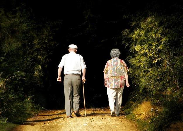 Jedyny sposób na przyzwoitą emeryturę to oszczędzanie /© Panthermedia
