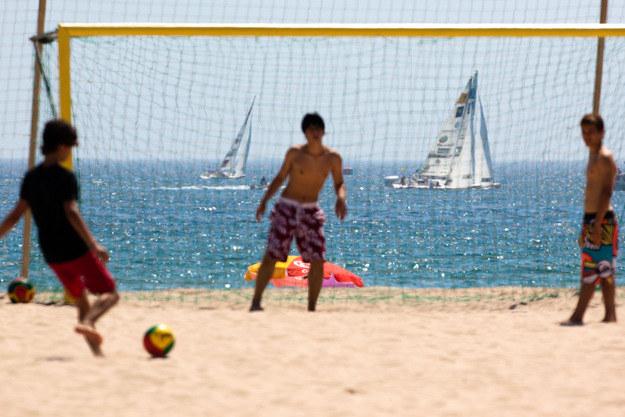 Jedziesz do Portugalii? Uważaj na mikroalgi /AFP