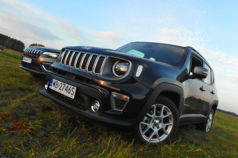 Jeep Renegade /INTERIA.PL