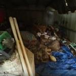 Jej dom był wysypiskiem śmieci. Wtedy pojawili się oni