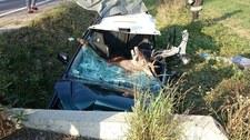 Jeleń wpadł do samochodu przez szybę. Jesienią uważaj na zwierzęta na drogach!