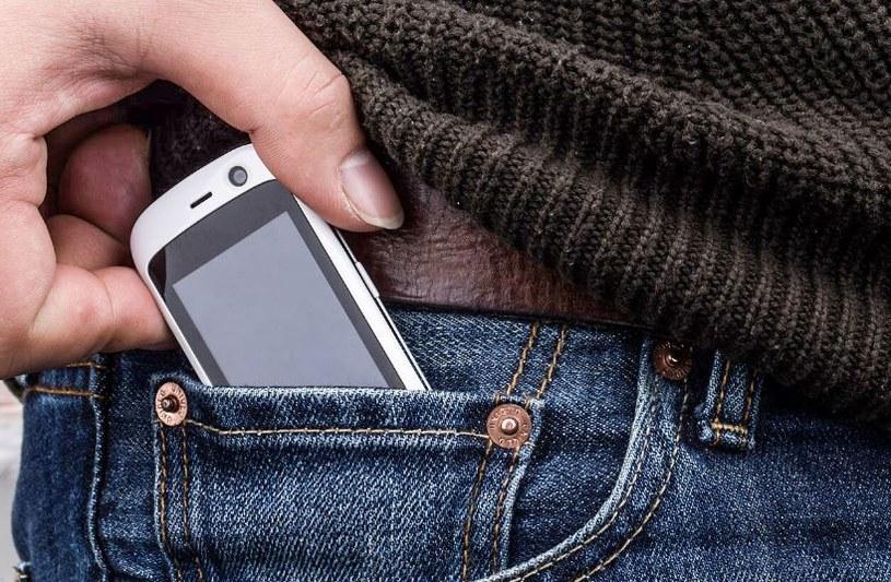Jelly jest najmniejszym smartfonem 4G na świecie /materiały prasowe