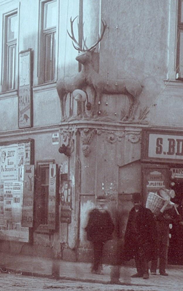 Jelonek od lat jest jedną z wizytówek Rynku Podgórskiego, fot: Stowarzyszenie Podgórze.pl /INTERIA.PL