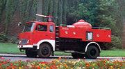 Jelonek z dekady Gierka: Symbol PRL, który trwa do dziś