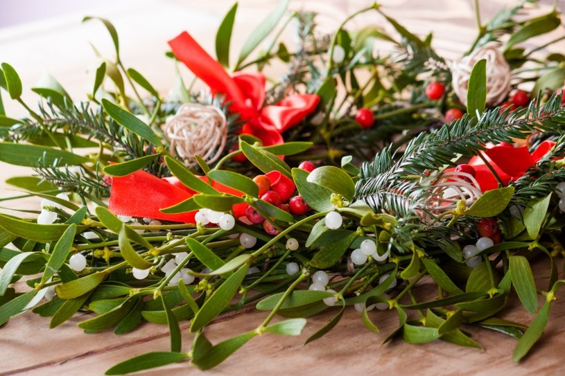 Jemioła to symbol świąt /©123RF/PICSEL