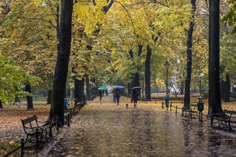 Jesień na krakowskich Plantach /Jan Graczyński /East News