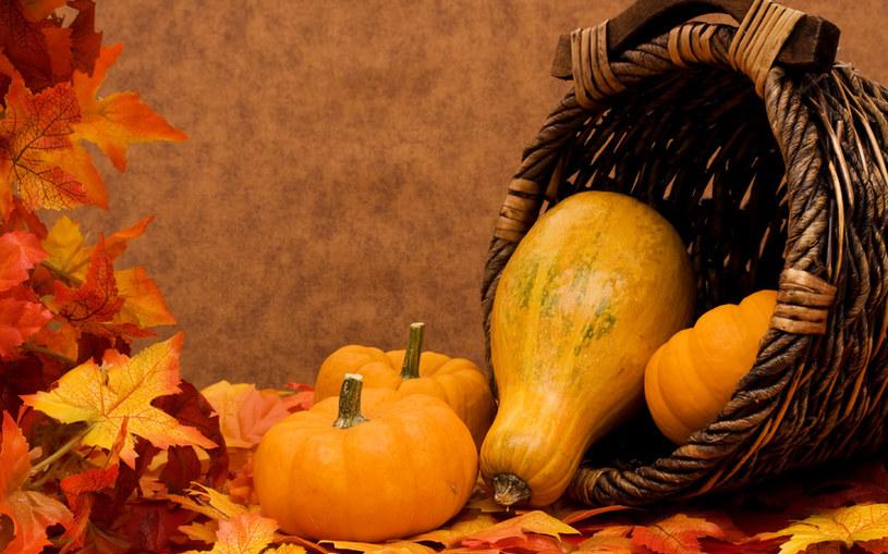 jesień /© Photogenica