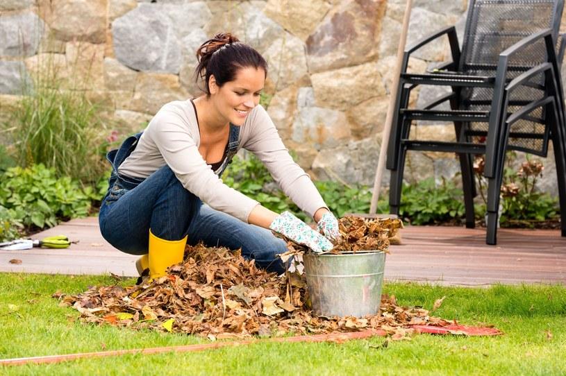 Jesienią przygotuj ogród na wiosnę - efekty pozytywnie cię zaskoczą! /123RF/PICSEL