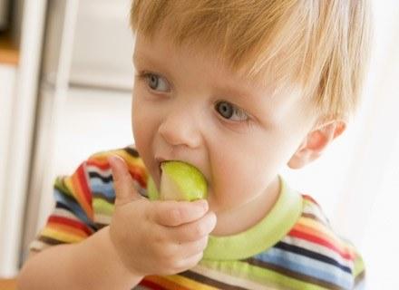 Jesienią warzywa i owoce smakują najlepiej /© Panthermedia