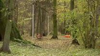 Jesienna chandra - czym się objawia i jak z nią walczyć?