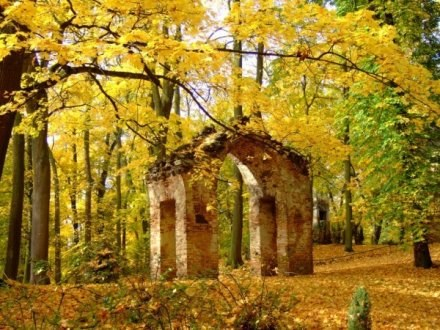 Jesienny relikt przeszłości..., fot. Basia Falińska (jedno z nagrodzonych w listopadzie zdjęć) /INTERIA.PL