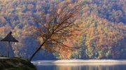 Jesienny spacer po Bieszczadach