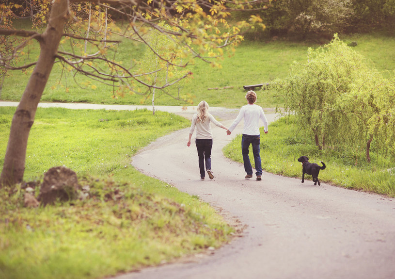 Jeśli nie masz psa, pożycz go od sąsiada, i spaceruj! /123RF/PICSEL