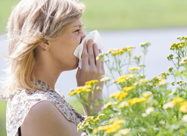 Jeśli ostatnio często kichasz, masz wodnisty katar i łzawią ci oczy, może to być spowodowane uczuleniem /123RF/PICSEL