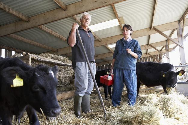 Jeśli rząd nie wprowadzi ustawowych zmian, rolnicy stracą ubezpieczenie w NFZ /© Panthermedia