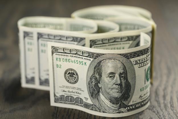 Jeszcze przed końcem roku za amerykańską walutę możemy płacić nawet 4 zł /©123RF/PICSEL