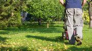 Jeszcze przez miesiąc możesz kosić trawnik