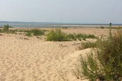 Jeszcze są dzikie plaże w Polsce