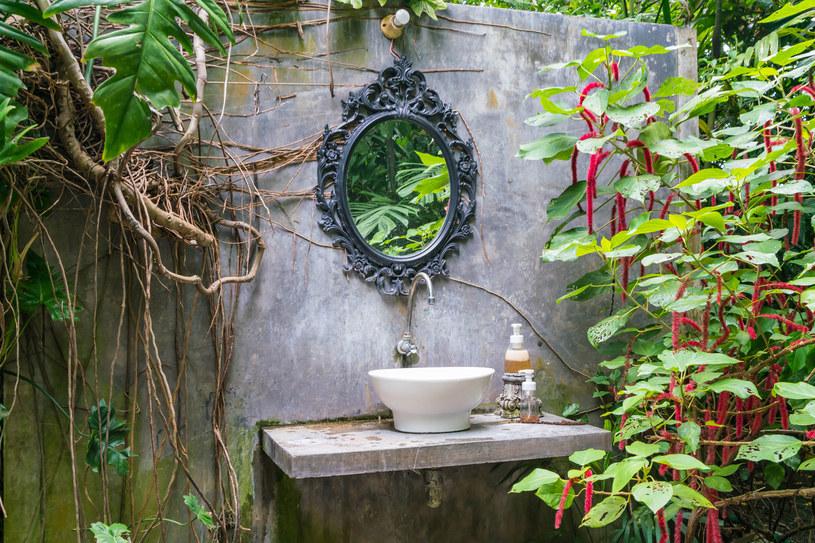 Jeżeli masz widną łazienkę, naprzeciw okna umieść lustro, w ten prosty sposób doświetlisz pomieszczenie i będziesz mogła w nim uprawiać nawet bardziej wymagające rośliny /123RF/PICSEL