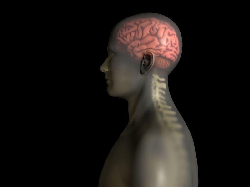 Jeżeli operacja przeszczepu głowy się uda, będzie to kamień milowy medycyny /123RF/PICSEL