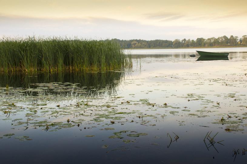 Jezioro Ełckie, zdj. ilustracyjne /123/RF PICSEL