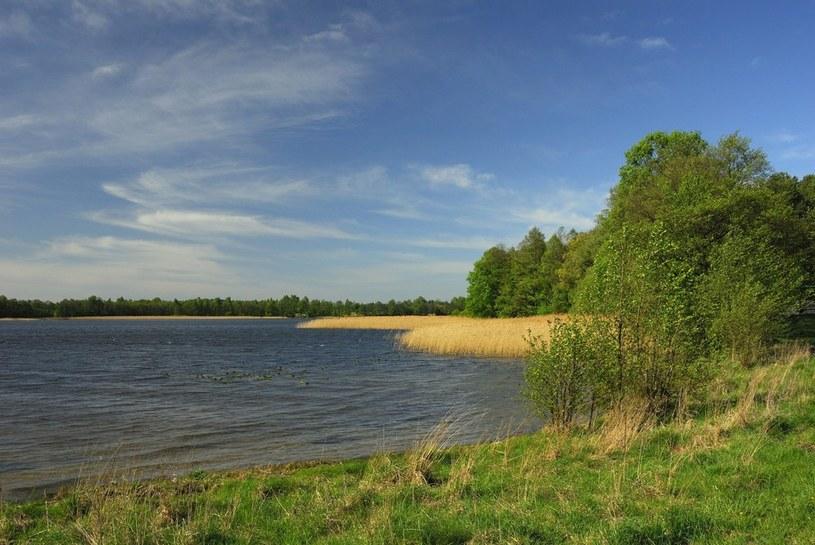 Jezioro Krzywe, zdjęcie ilustracyjne /Piotr Płaczkowski /Reporter